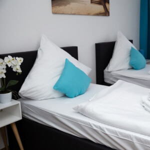 Boardinghouse ApartHomes Nürnberg, central located, WiFi, TV, Netflix, Kitchen Frau Scherer 90461 15927438455eef57a5c18e9